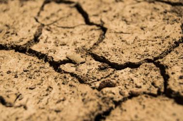 Az elmúlt 120 év legszárazabb tavasza az idei Ausztráliában