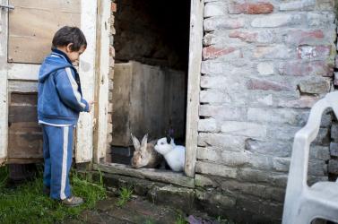 Csökken a szegénység, de az így is százezreket érint Szlovákiában