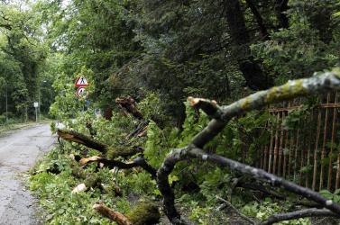 Heves szélvihar csapott le Finnországra, 60 ezer háztartásban nincs áram