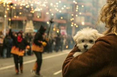 Aki szilveszterkor kutyát ment, arra nem vonatkozik a kijárási tilalom Magyarországon