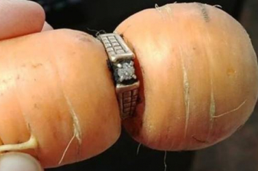 Sárgarépán találták meg a 13 éve elhagyott jegygyűrűt