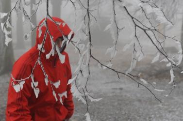 WHO: A hideg időnben nagyobb a kockázata a  a szív- és vérkeringési, illetve a légúti megbetegedéseknek