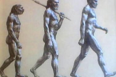 Kikerül az evolúció a középiskolás tantervből Törökországban