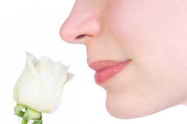 A szaglás élessége megjósolhatja a várható élettartamot
