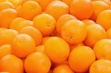 Innen származik az összes citrusféle őse