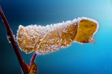 Durva lehűlés jön – jövő hétre megérkezik a tél!