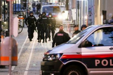 A bécsi merénylettel kapcsolatban őrizetbe vettek közül nyolcan büntetett előéletűek