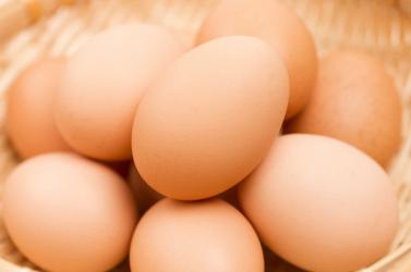 Ismét fipronillal szennyezett tojásokat találtak Németországban