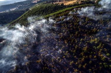 Oltották az erdőtüzeket, a munka közben meg lezuhant a török légierőrepülőgépe