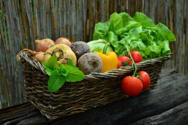 Űrhajósok zöldség- és gyümölcsellátását biztosító üvegház tervét mutatták be német kutatók