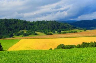 Mostantól az alkotmány védi a termőföldet a külföldi nyerészkedőktől