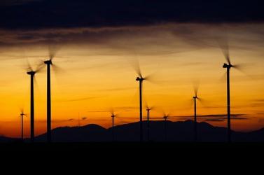 Dánia áramfelhasználásának közel a felét a szélenergia fedezte tavaly