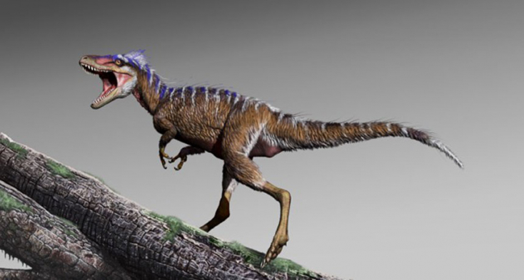 A T. rex apró termetű elődjének maradványaira bukkantak kutatók