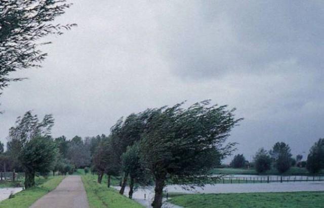 Brutális szél tombolt Romániában, fákat döntött az utakra, elektromos vezetékeket tépett le