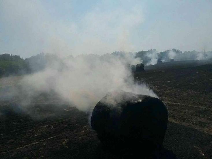 Nagyobb területen lángolt a tarló Ekecsnél (FOTÓK)