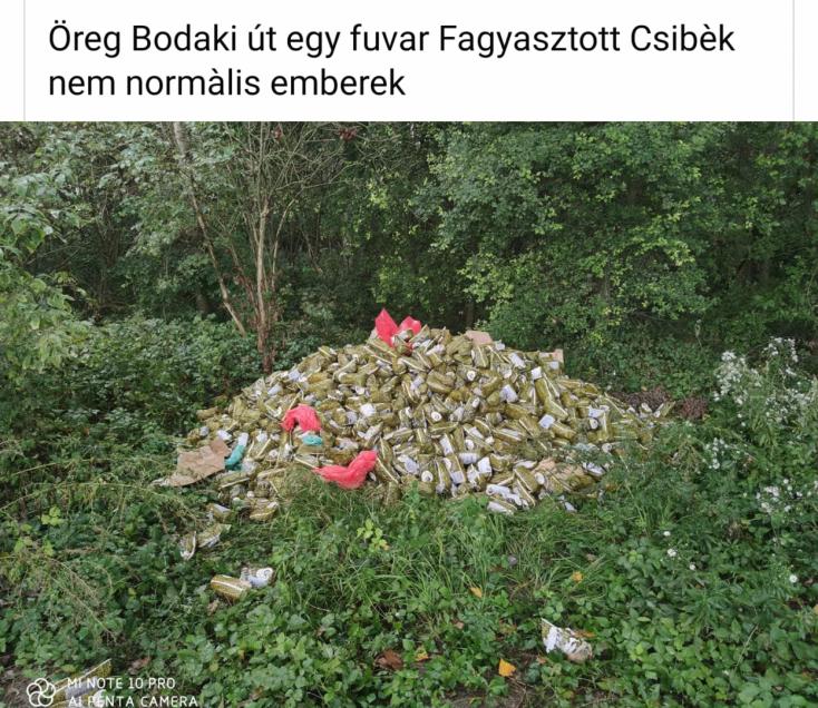Nagy mennyiségű fagyasztott csirkehúst borítottak ki ismeretlenek Bodaknál