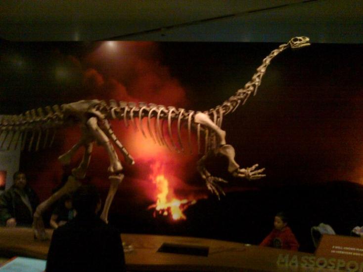 Új dinoszauruszfajt azonosítottak paleontológusok