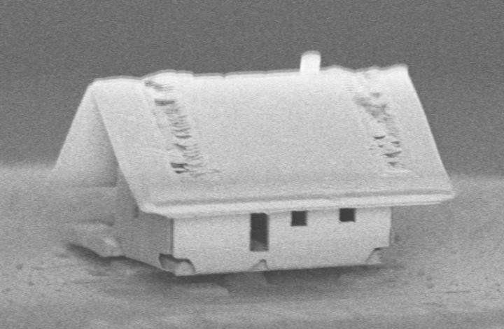 A világ legkisebb háza kisebb, mint a karszőröd átmérője