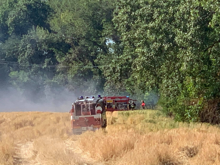 Lángra kapott az aljnövényzet és a gabona Dunaszerdahelynél, több tucatnyi tűzoltó küzdött a lángokkal!