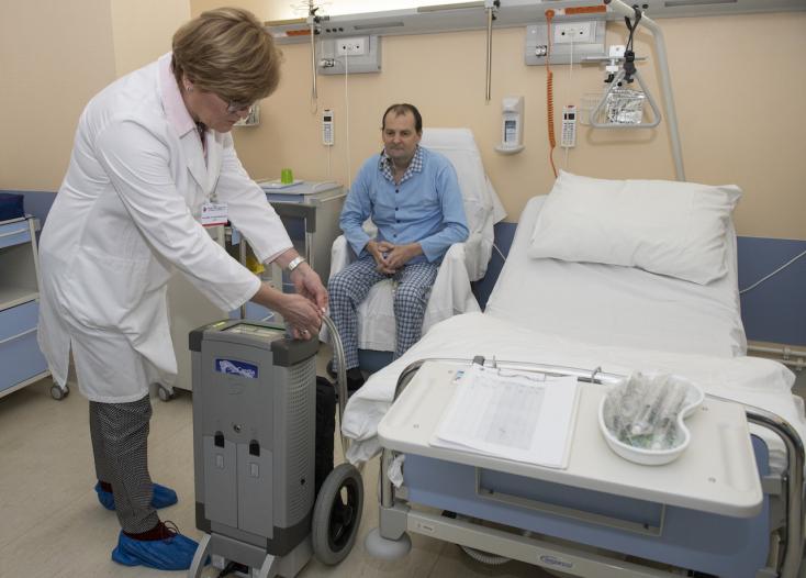 A pozsonyi orvosok először disznókon gyakorolták a műszívbeültetést