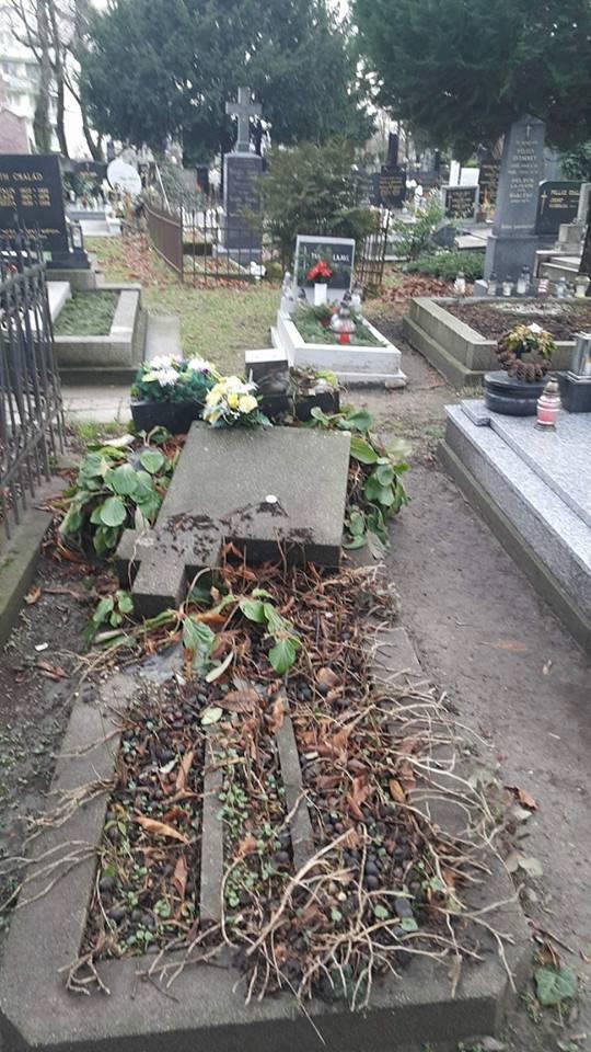 Vandálok garázdálkodtak a somorjai temetőben!