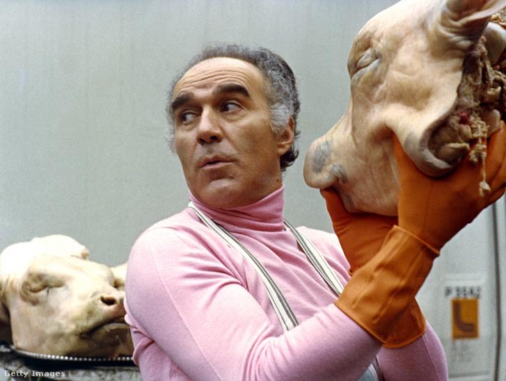 Elhunyt Michel Piccoli legendás francia színész