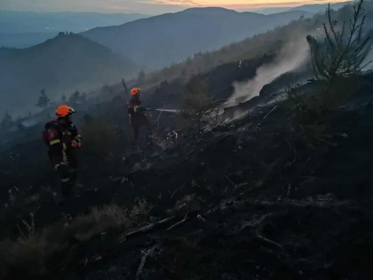 24 óra elteltével sem sikerült megfékezni az erdőtüzet