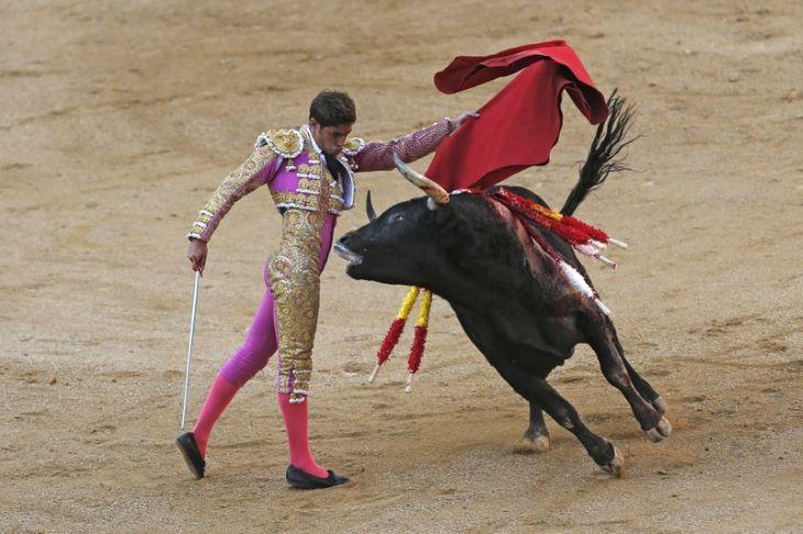 Másfél év szünet után újra bikaviadalt rendeztek Madridban