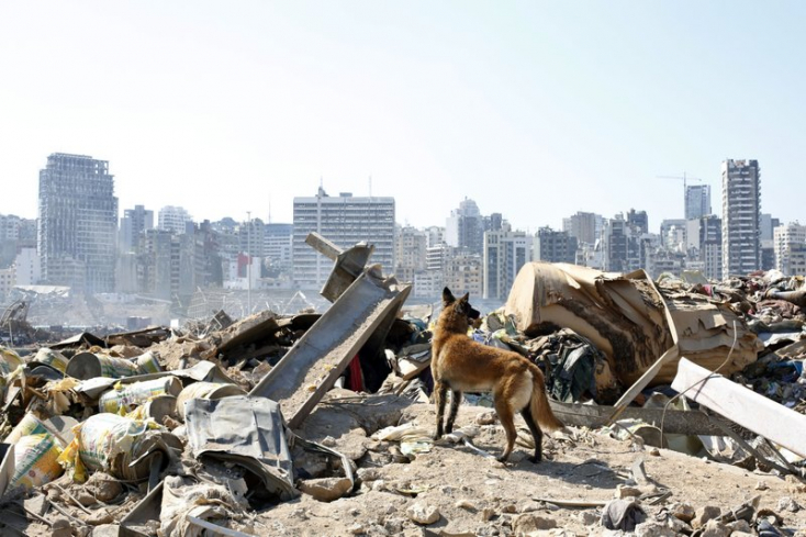 Egy hónappal a robbanás utánéletjeleket fedeztek fel a mentőka romok alatt Bejrútban