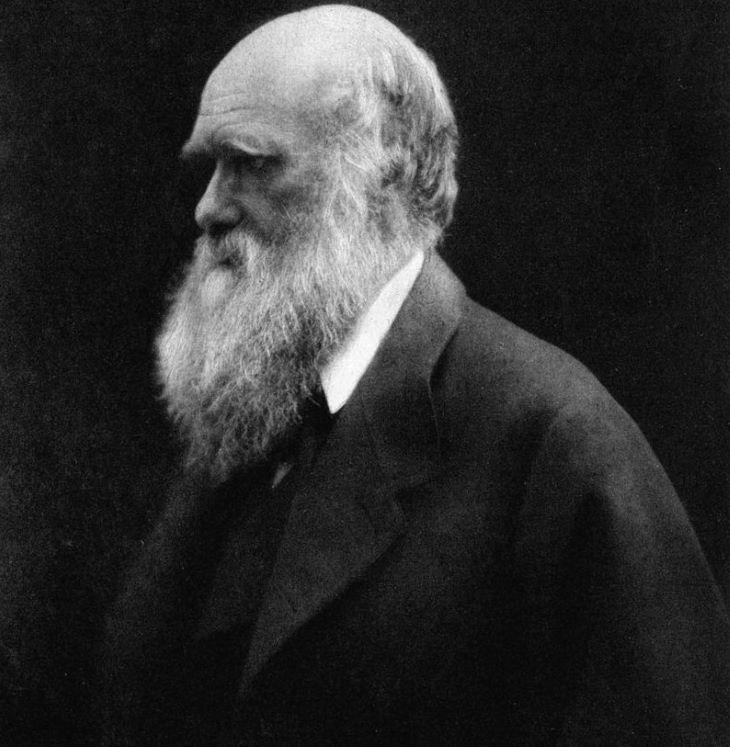 Charles Darwin két jegyzetfüzetét húsz éve nem találják