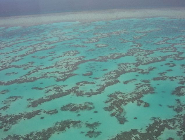 Egyre súlyosbodó korallfehéredést figyeltek meg az ausztrál Nagy-korallzátonynál