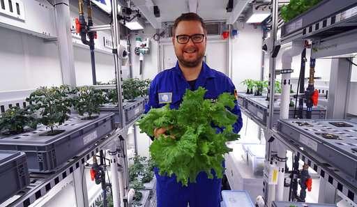 Beértek az első zöldségek talaj, napfény és növényvédőszerek nélkül az Antarktiszon