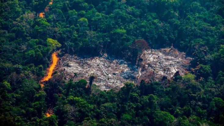 Amazónia védelmére kötött megállapodást a térség hét országa