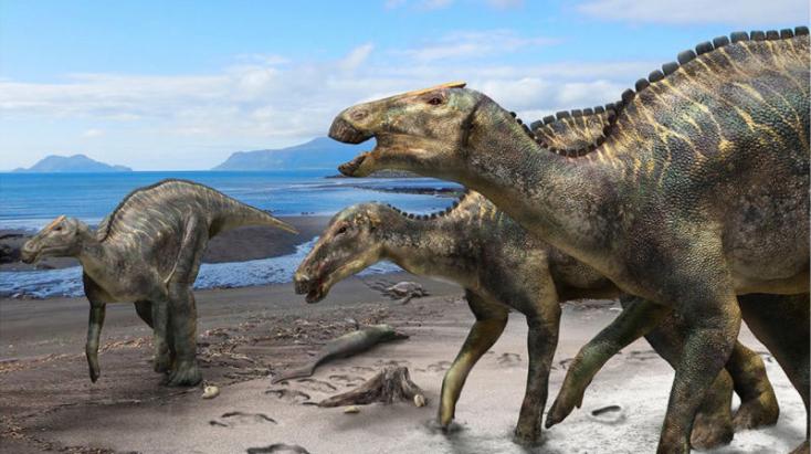 72 millió éve élt óriási dinoszauruszfajt fedeztek Japánban
