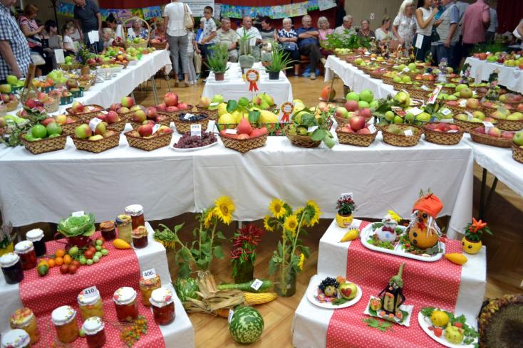 """Csallóköz Gyümölcse: """"A legegészségesebb az, amit megtermelünk a saját kertjeinkben"""""""