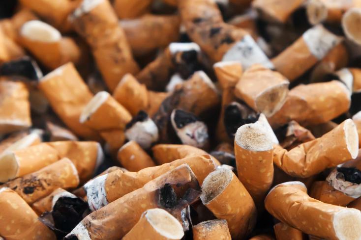 Veszélyesek a talajba kerülő cigarettacsikkek