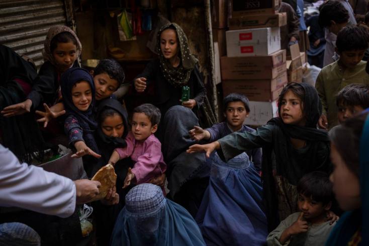 Afgán konfliktus - EP: nem kerülhet sor arra, hogy valakit Afganisztánba visszatoloncoljanak