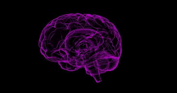 Itt a válasz a világ állapotára: Csökken az emberek intelligenciája!