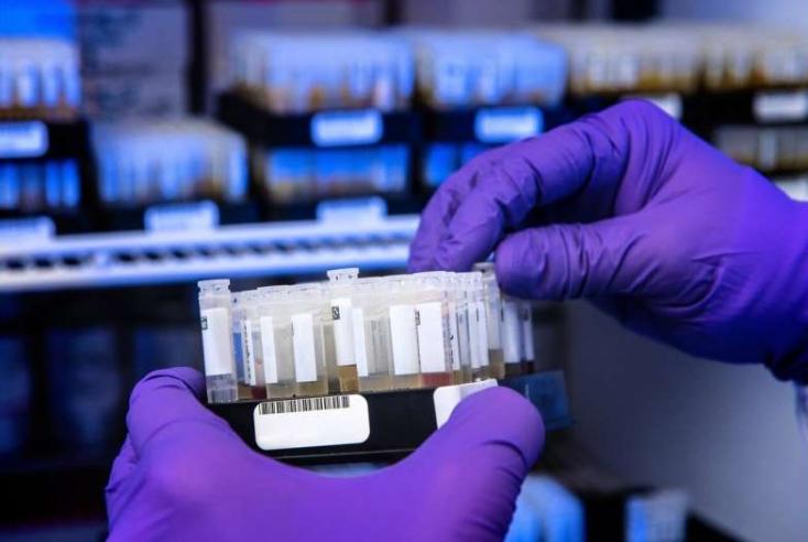 Legalább nyolc hónapig maradnak meg az antitestek az emberi szervezetbenegy tanulmány szerint