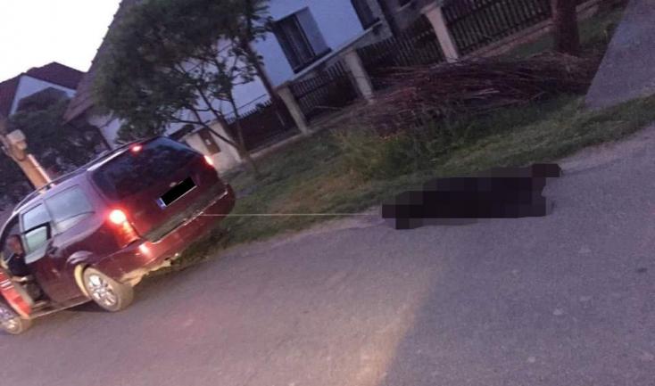 Kocsijához kötve vonszolta haza kutyáját a nyugdíjas - Az eb elpusztult, a férfit megverték