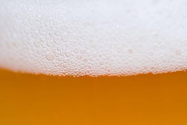Ötezer éves élesztőből készítettek sört