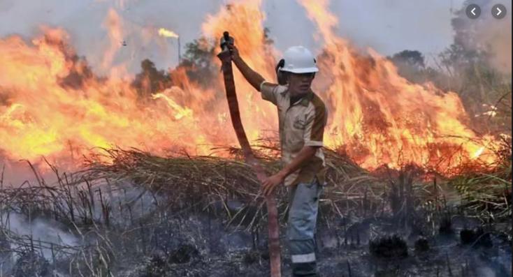 Súlyos erdőtüzek pusztítanak Szumátrán és Borneón