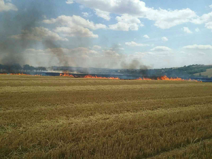 Óriási lánggal égett egy mező, le kellett zárni a közelben húzódó utat