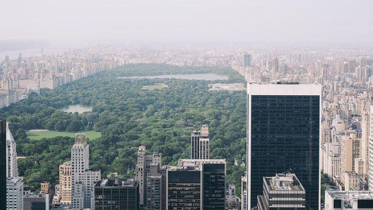 Nagyobb a biológiai sokféleség a városok jómódú környékein