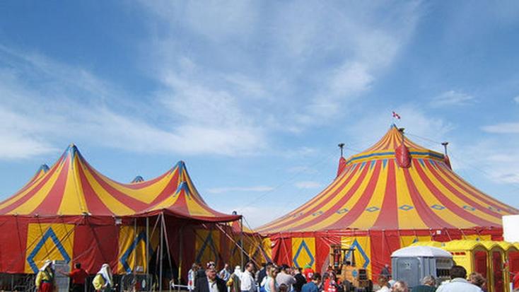 A cirkuszművészet nemzetközi nagykövetévé választották Fekete Pétert