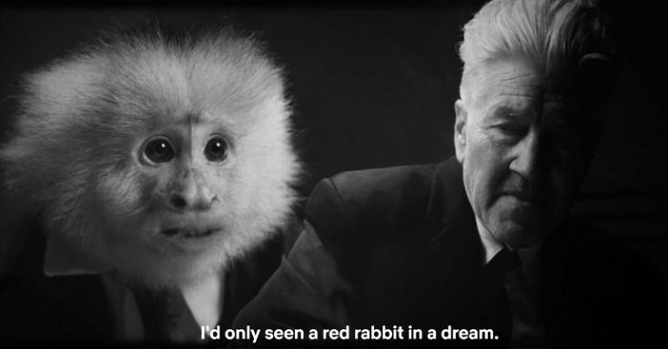 David Lynch egy beszélő majmot vallat a Netflixre készített rövidfilmjében