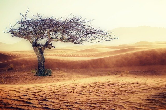 Afrika az éghajlatváltozás által leginkább érintett kontinens