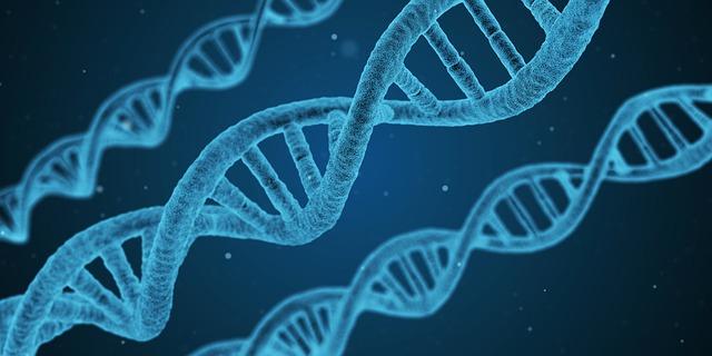A reprodukciós célú génszerkesztés globális tilalmára szólítanak fel tudósok