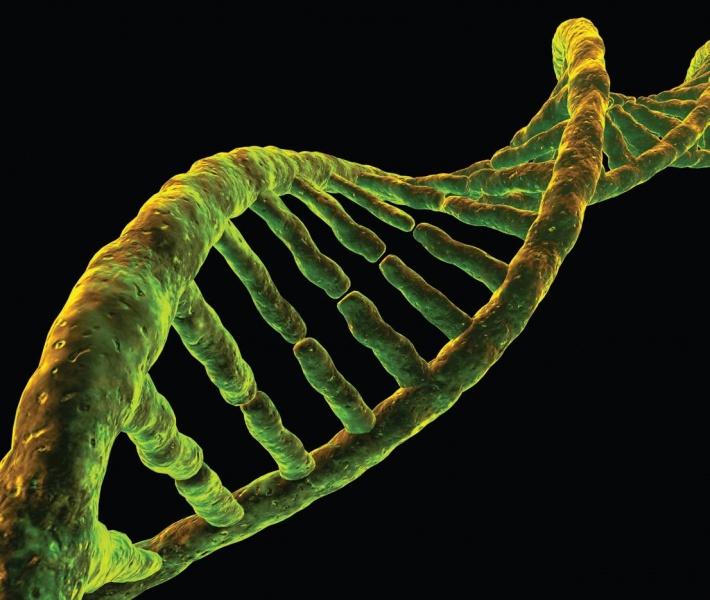 Soha ilyen kevés DNS alapján nem találtak meg gyilkost