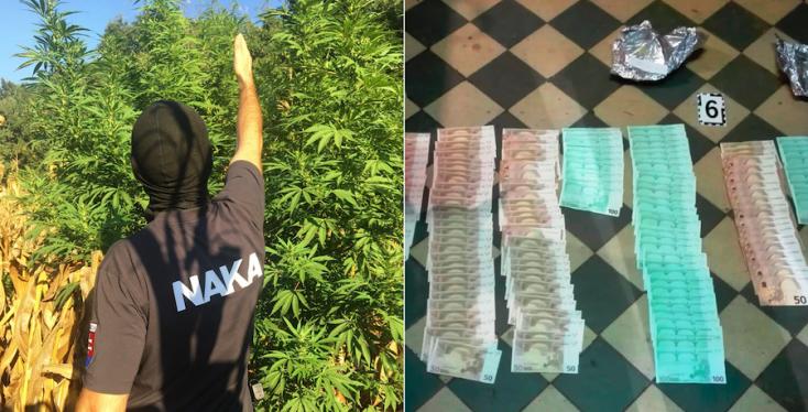 Győri dílerek elfogása vezetett a csallóközi drogkartell lebukásához